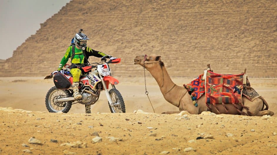 In this life, Adam Riemann's camel runs on petrol.